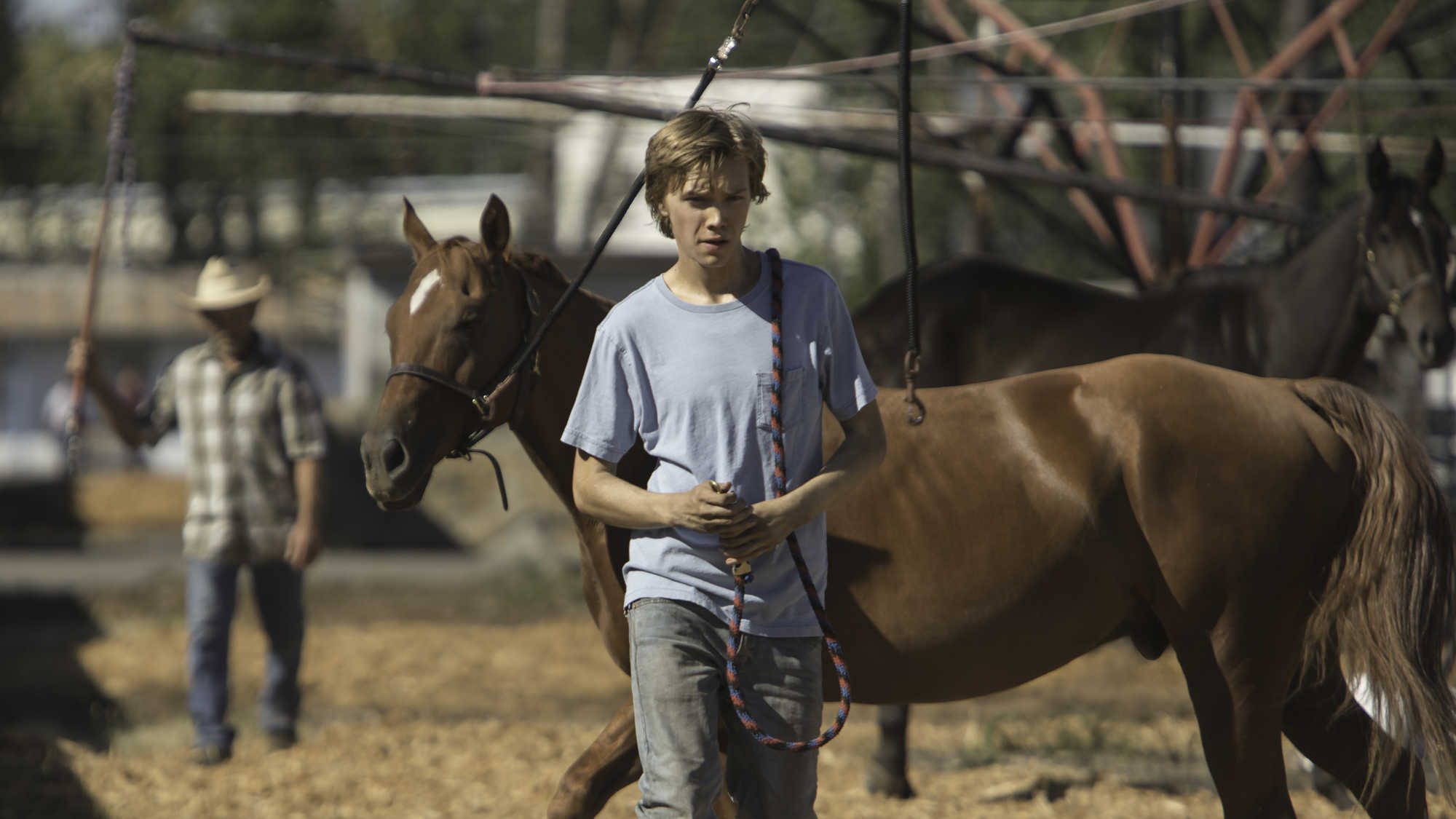 Lean on Pete (image 2)